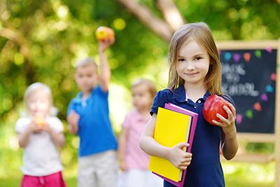 FREE 1st Grade Lesson Plans for Teachers